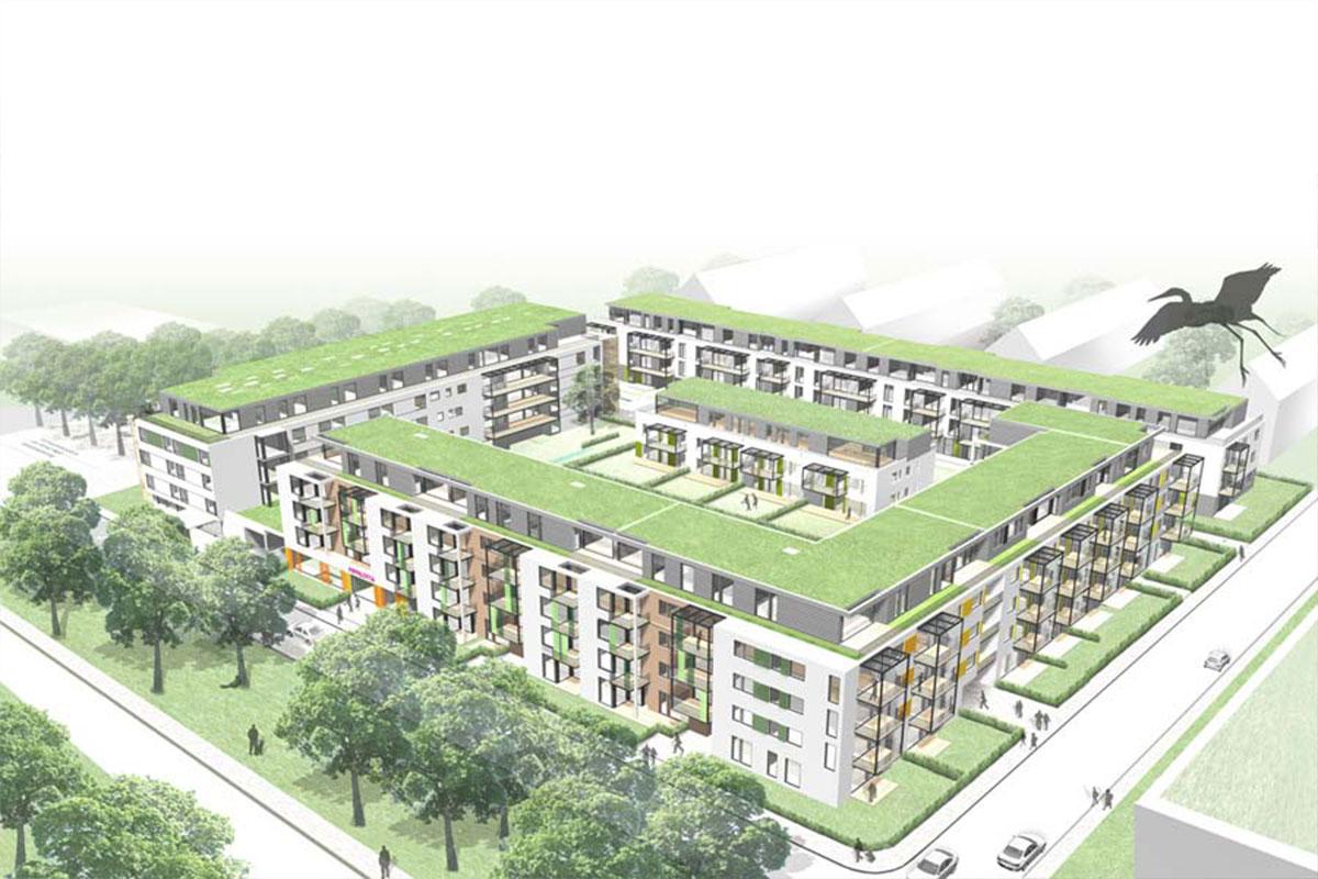kranichgarten1